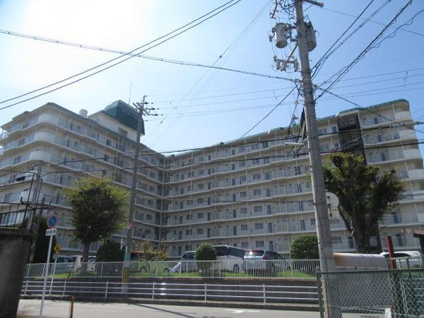 8階建の大きなマンションです(外観)